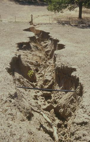 Soil Erosion Essay